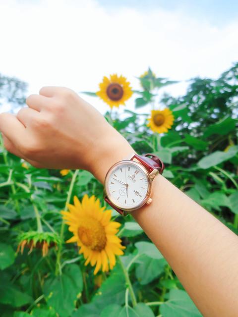 LOBOR手錶 (9)