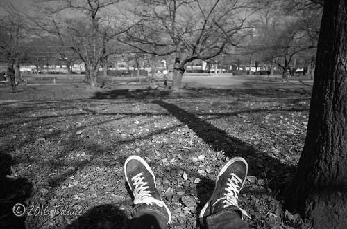 GR2作例:枯れ葉の上に座って休憩中