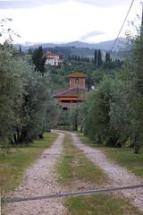 Villa South Approach