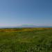West Kilbride Landmarks (48)