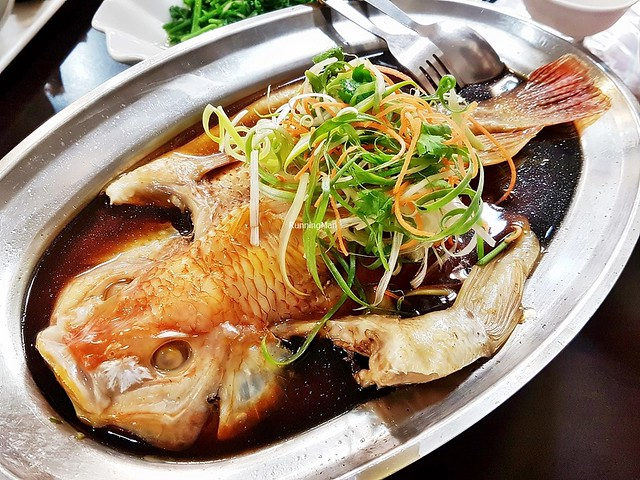 Steamed Sun Moon Lake Grouper Fish