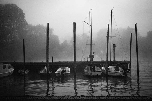 Muelle #tigre #bnw #riverphotography