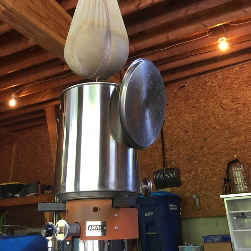 Trappist Single brew day
