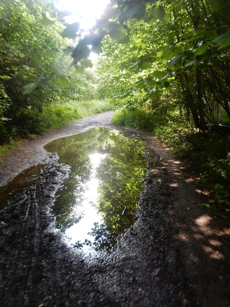 Puddle Saunderton Circular via West Wycombe