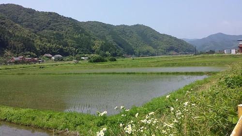 The road to Mitou