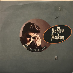 THE BLOW MONKEYS:DIGGING YOUR SCENE(JACKET A)