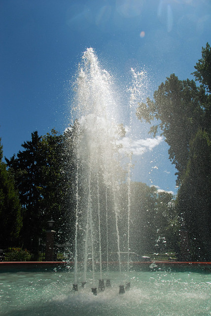 Polson Park (5)