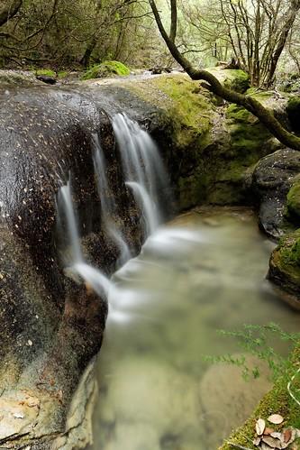 Les trésors secrets du ruisseau
