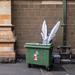 Dumpster Angel