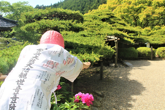 yoshiminedera046