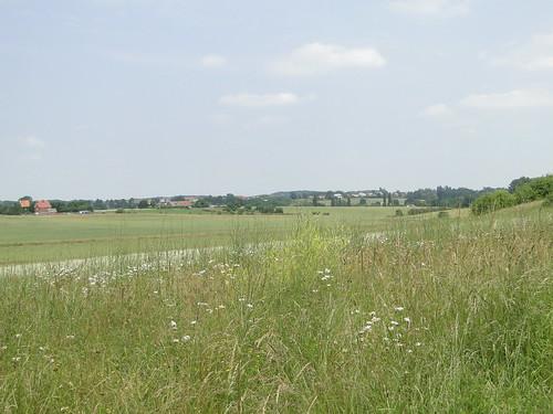 Landscape near Diest