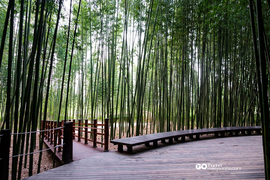 Simnidaesup Bamboo Forest