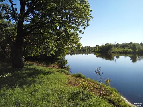 Устье реки Поля