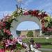 Chatsworth Flower Show:   160/365