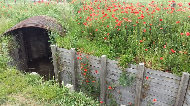 Pilgrimage of Hope to Messines