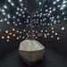 Näitused / Exhibitions