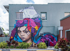 Street Art - Pinellas Park, FL  2018