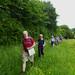 Wendover - Amersham, walk 31