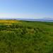 West Kilbride panoramic photos20