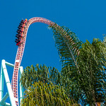 Primary photo for Day 10 - Knott's Berry Farm & Adventure City