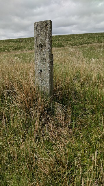 Post south of Blacklane Mire