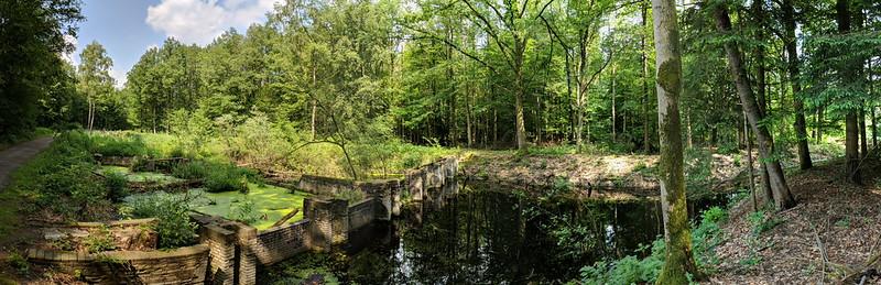 Netherlands 2018 1161