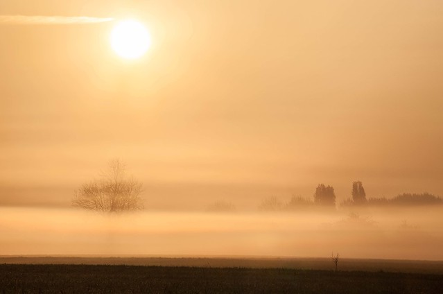 Strips of Mist, Canon EOS 5D MARK II, Canon EF 75-300mm f/4-5.6 IS USM