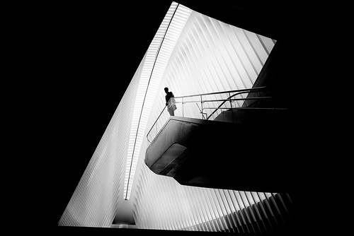 Untitled por Alan Schaller
