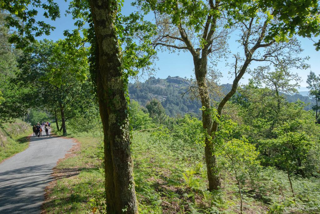 17.- Rota do Monte Aloia (138)