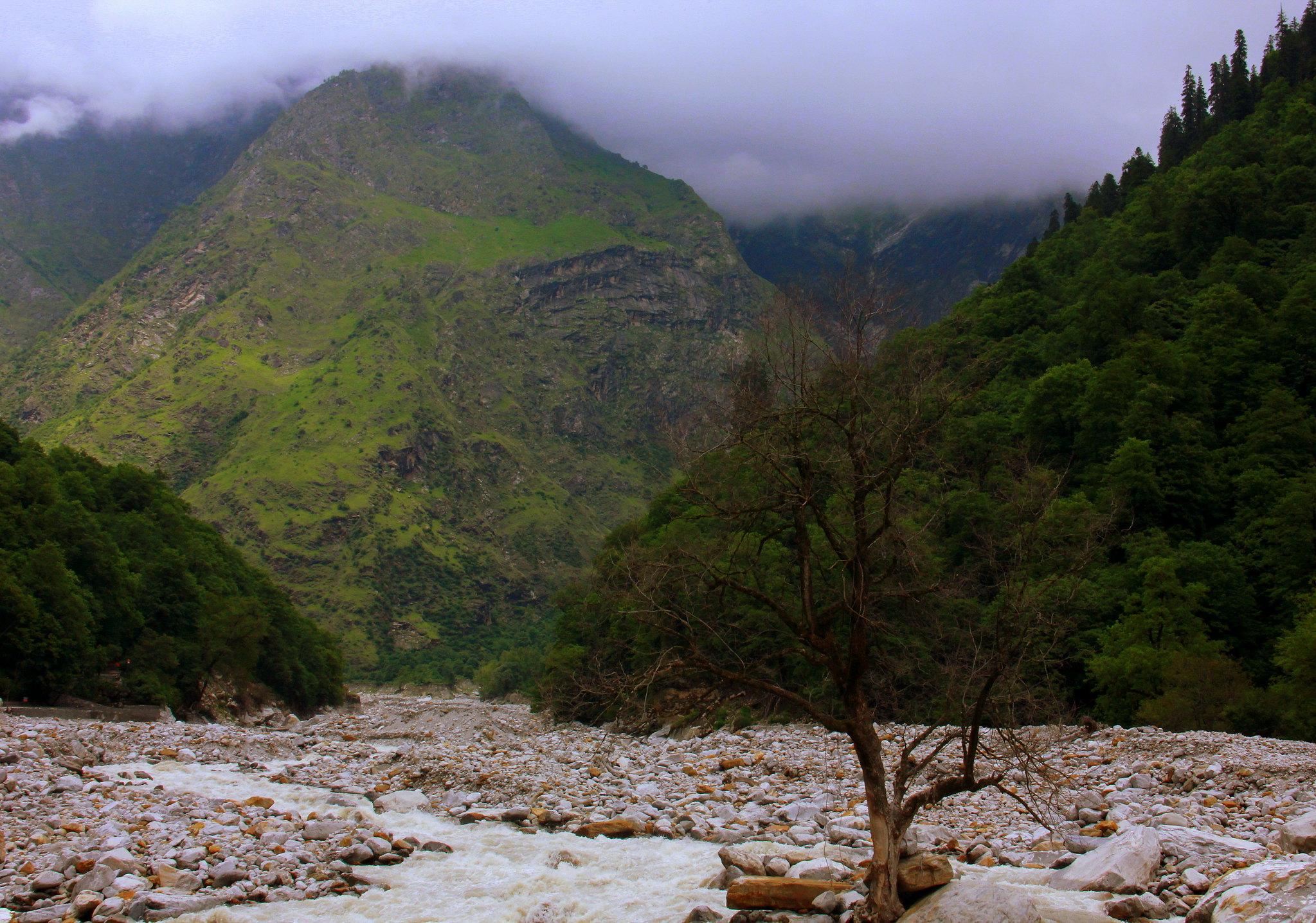 Ghangaria is the last stop of the Valley of Flowers trek