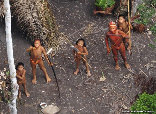 Assassinato de indígenas que aguarda apuração do Ministério Público Federal pode elevar número de mortes em 2017 a 81 - Créditos: Foto: G.Miranda/FUNAI/Survival