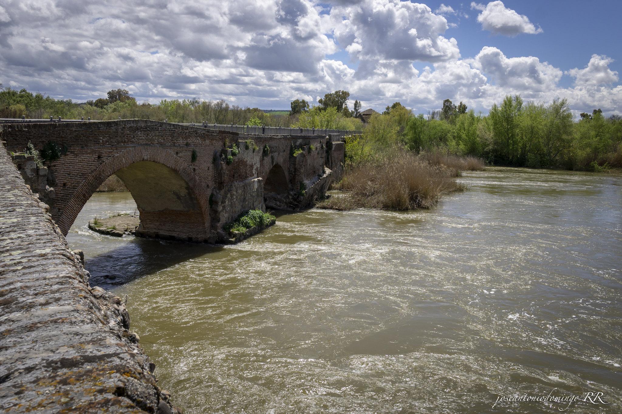 Río Tajo y Puente Viejo o de Santa Catalina