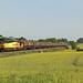 Colas Rail Freight 60056 met trein 683C