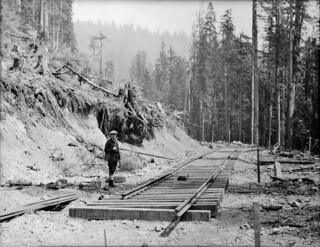 Railroad tracks under construction in Cedar River Watershed, 1930