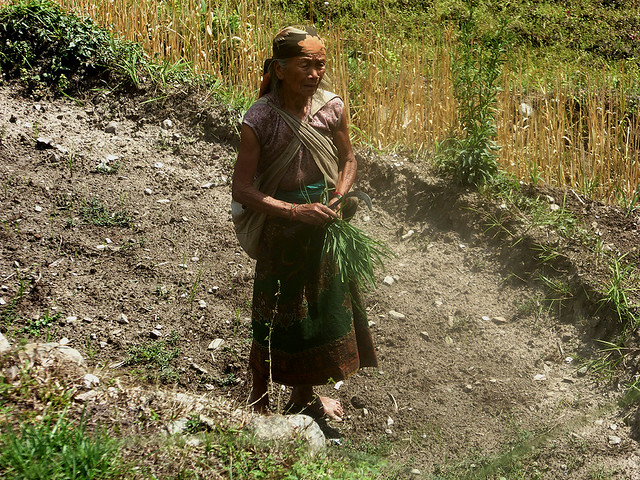 Most of the Mountainous regions of Nepal still rely on subsistence farming and Nepali people there live close to the poverty line.
