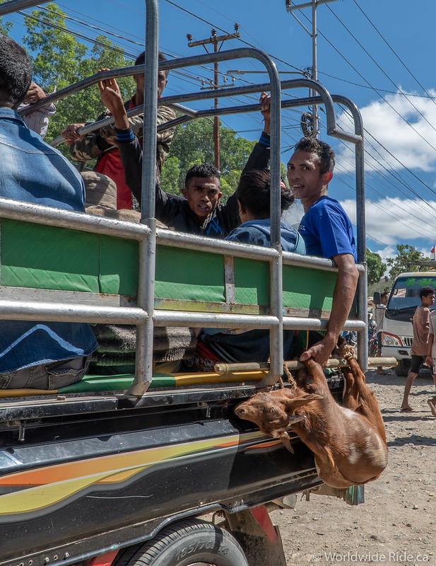 Timor-Leste-22