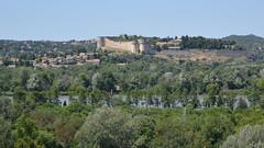 Villeneuve-lès-Avignon depuis Avignon