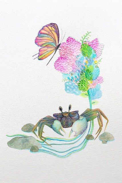 Nadia Oh Sueh Peng 個展「The Butterfly and The Crab」を開催します