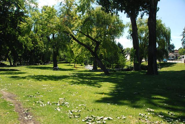 Polson Park (6)