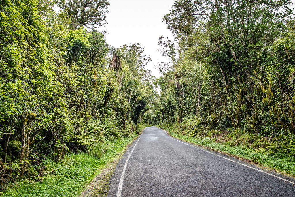 Gdzieś w Nowej Zelandii