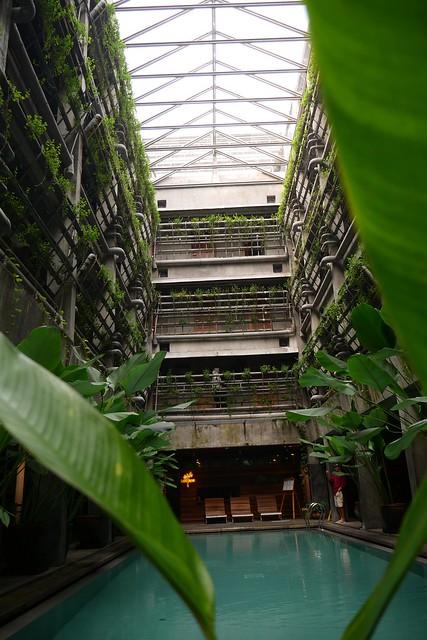 Kolam Renang Green Host