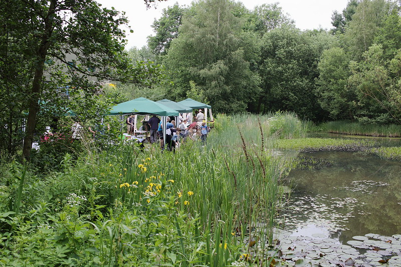 Music and Pond Dipping