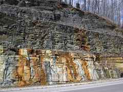Fort Payne Formation-Chattanooga Shale-Cumberland Formation; Burkesville West Rt. 90 roadcut, Kentucky, USA) 4