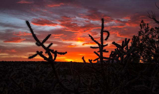 Sunset-29-7D1-060618