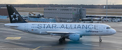 Lufthansa A-320-200 in Star Alliance colors at FRA
