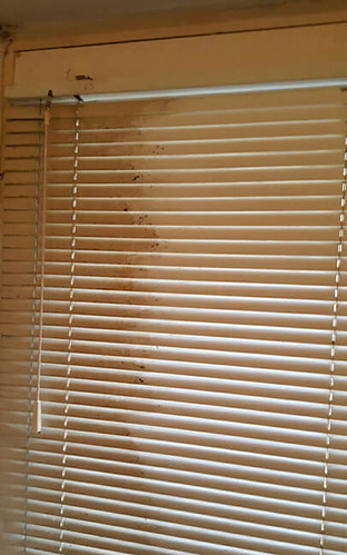 plastic blinds cleaning