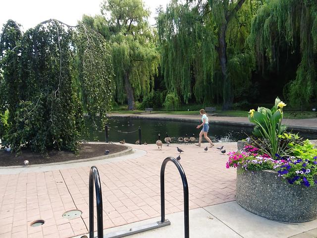 Polson Park (62)