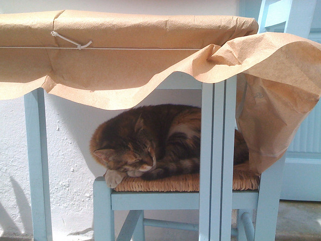 Paros 15 cat shade, Apple iPhone 3G
