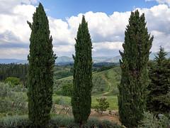 Villa Northeast View