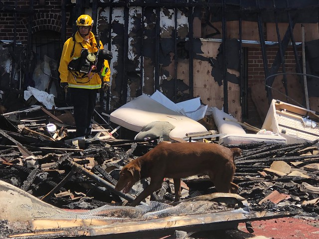 Blaze Consumes Damaged Strip Mall in East Hollywood